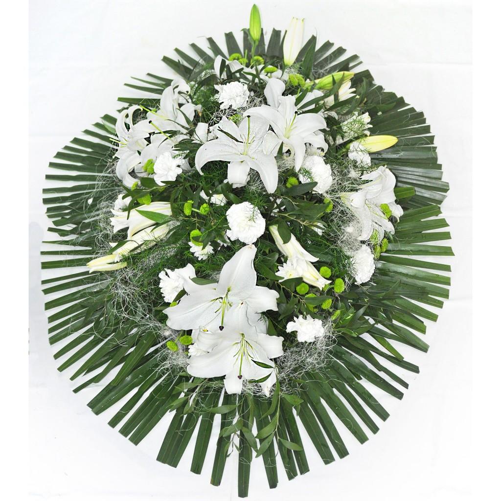 Palma blanca